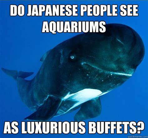 Whale Meme - whale meme related keywords whale meme long tail
