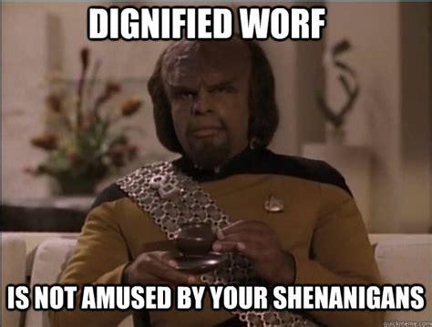 Startrek Meme - dignified worf star trek pinterest memes