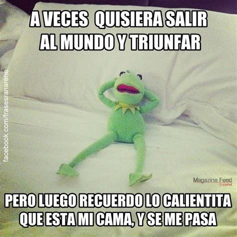 Rana Rene Memes - memes de la rana ren 233 con frases quot a veces quot en im 225 genes