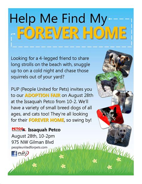 pup dog rescue flyers portfolio michelle walls