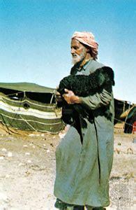 bedouin people britannicacom