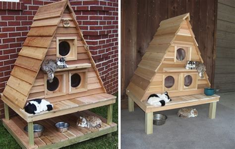 cat houses outdoor plans wood work heated cat house plans pdf plans