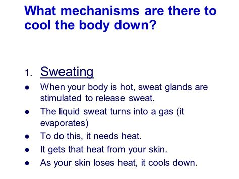 Does Sweat Turn You On by How Does Varying Temperature Affect The Speed Of Woodlice