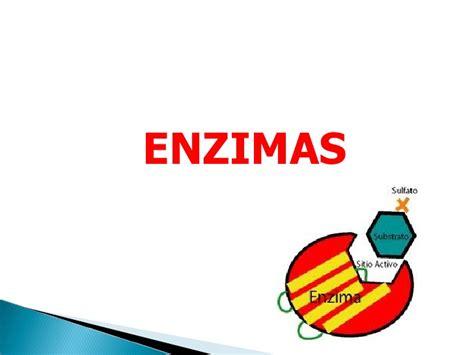 proteinas y enzimas biologia prote 237 nas enzimas