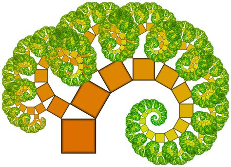 Colo pitagorean tree 30 60 pythagoras tree fractal in
