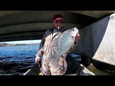 crappie fishing ideas  pinterest bass