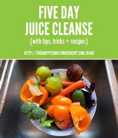What To Eat After Juice Detox by 1000 Images About Fitness On Advocare 24 Day