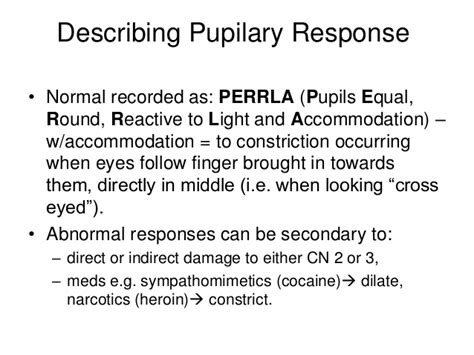 Pupils Equal Reactive To Light And Accommodation by Pupils Equal Reactive To Light And Accommodation Image