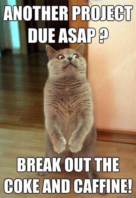 Asap Meme - asap meme 28 images 25 best memes about asap rocky