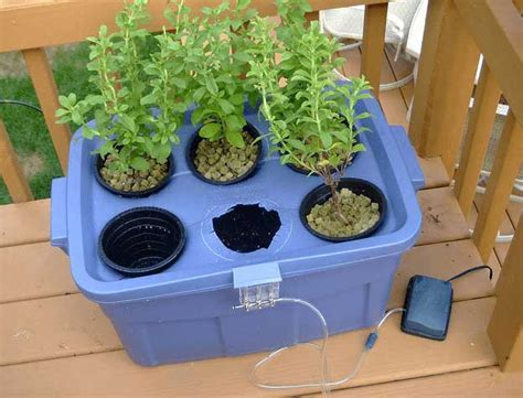 Hydroponic Systems Roundup 33 Best Hydroponic Gardens How To Build A Hydroponic Vegetable Garden