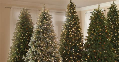 28 best home depot real christmas tree prices