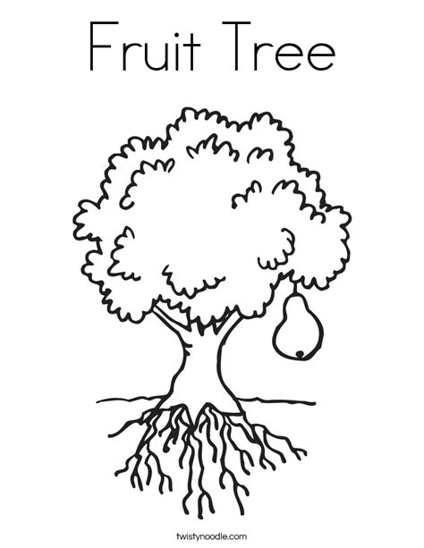 coloring page tree with fruit fruit tree coloring page twisty noodle