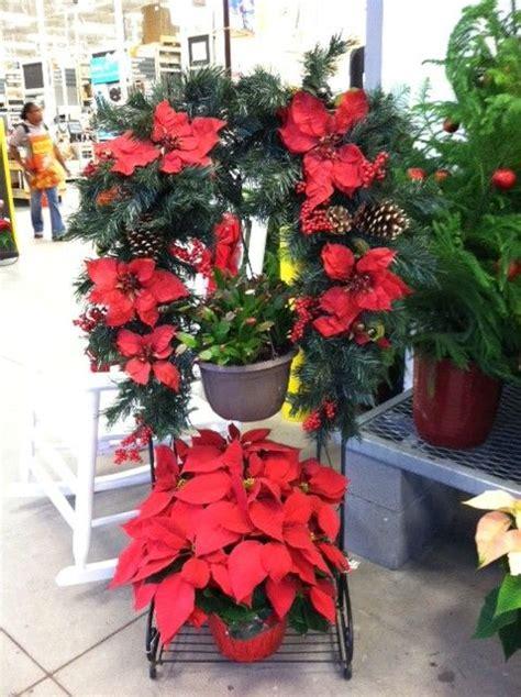 hanging basket stand  holiday flowers  rambo
