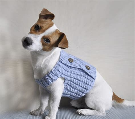 dogs in sweaters 21 dogs in handmade sweaters cuter cutest from etsy retro renovation