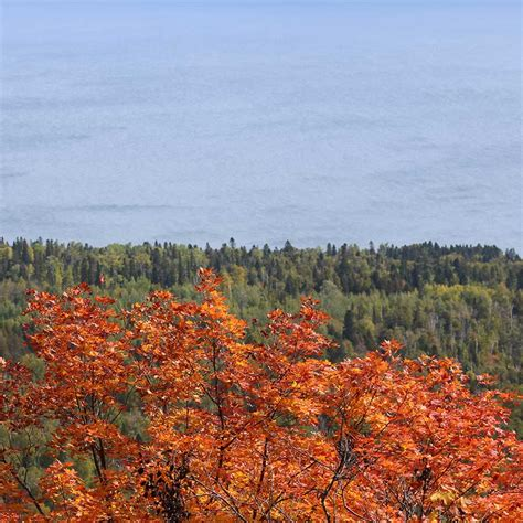 fall color report fall color report for mn s shore of lake superior