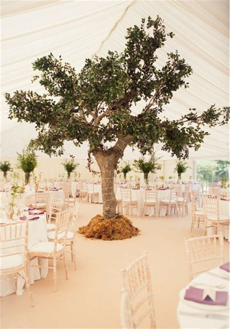 small indoor trees indoor tree central feature a tent wedding
