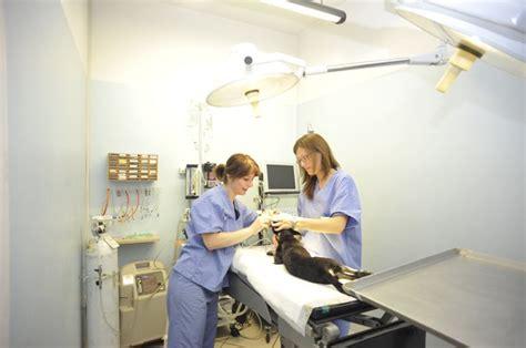 lade scialitiche lade scialitiche per sala operatoria sala operatoria