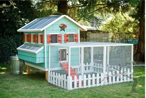 amazing diy chicken coops the whoot