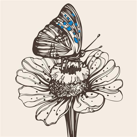 tekening vlinder met bloem hand getrokken vlinder op een bloem vector illustratie
