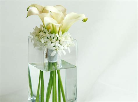 Small White Vases Cheap by Vases Designs White Flower Vase White Bud Vases Cheap