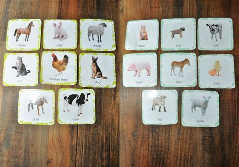 montessori printables animals montessori inspired farm animal cards printables
