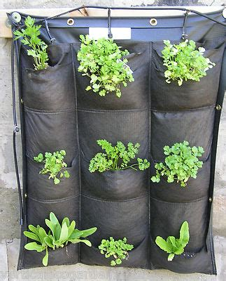 hydroponic suitable vertical gardening systems and