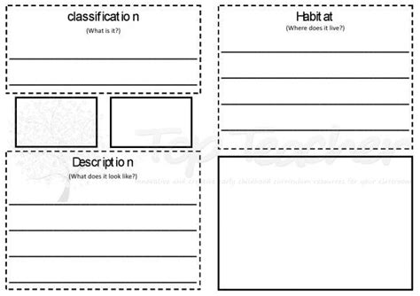 Classification Card Template by Animal Report Template Primary Animal Report