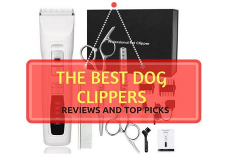 best clippers top 5 best clippers for grooming 2019 reviews