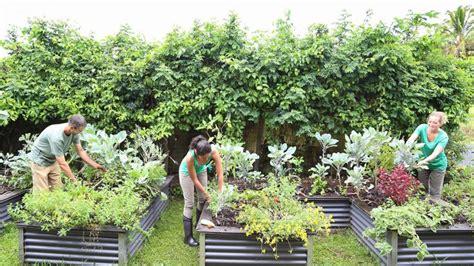 start  community garden
