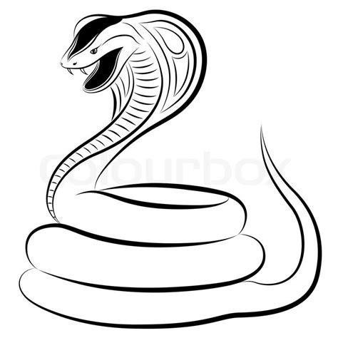 snake cobra stock vector colourbox