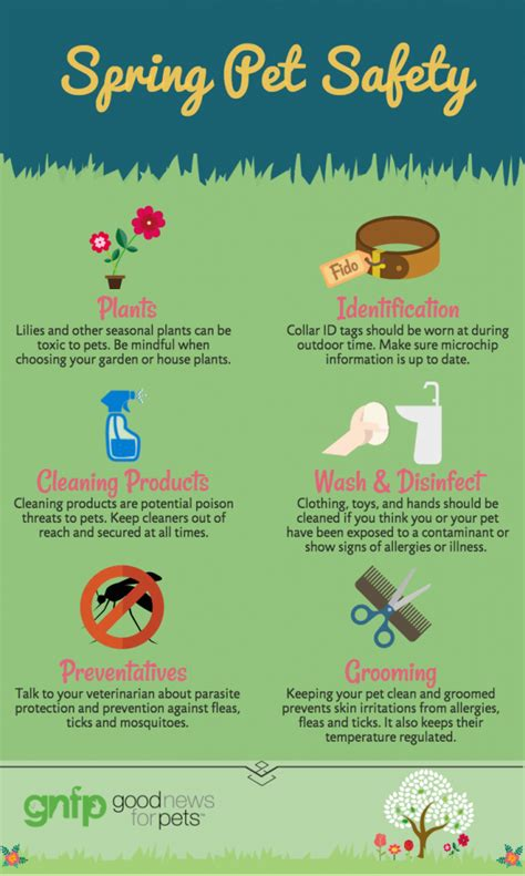 spring tips spring pet safety tips good news for pets