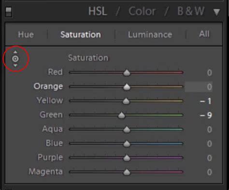 color adjustment lightroom color adjustment for environmental portraits