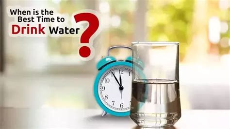 What S The Best Time To Drink Water Quora When Is The Best Time To Water My Vegetable Garden