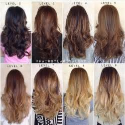 6 hair color 25 best ideas about hair dye color chart on