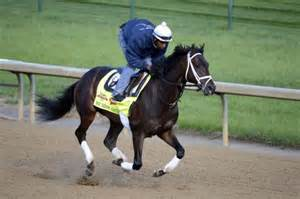 Nick Do The Kentucky Derby by Kentucky Derby Horses 2014 We Miss Artie Pedigree