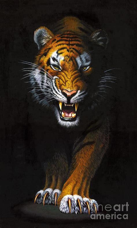 stalking tiger photograph by mgl studio chris hiett