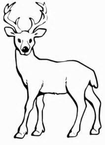 Christmas Reindeer Ornaments - ausmalbilder von hirsch ausdrucken malvorlagen kostenlos cliparts free bilder kostenlos