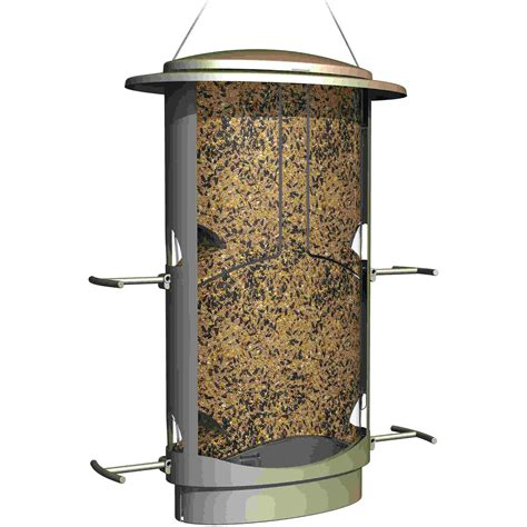 Squirrel Proof Seed Feeders classic brands squirrel proof x 1 seed bird feeder