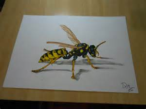 draw wasp drawing 3d illusion dibujarteriestra deviantart