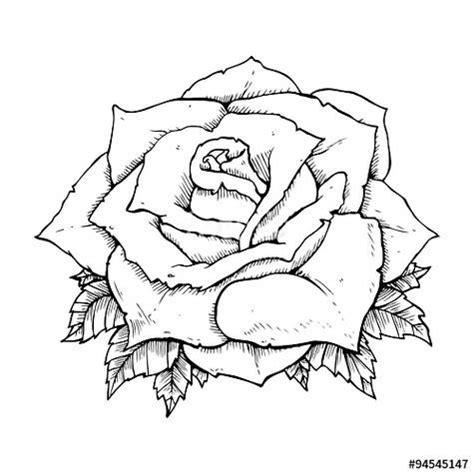 sketsa gambar bunga animasi hitam putih gambar animasi keren