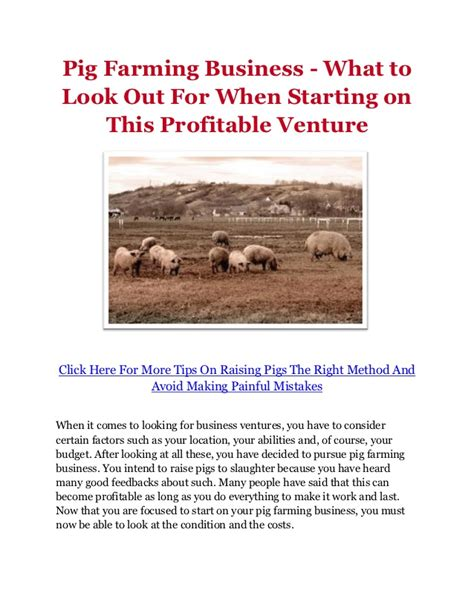 sle business plan on pig farming pig farming business what to look out for when starting