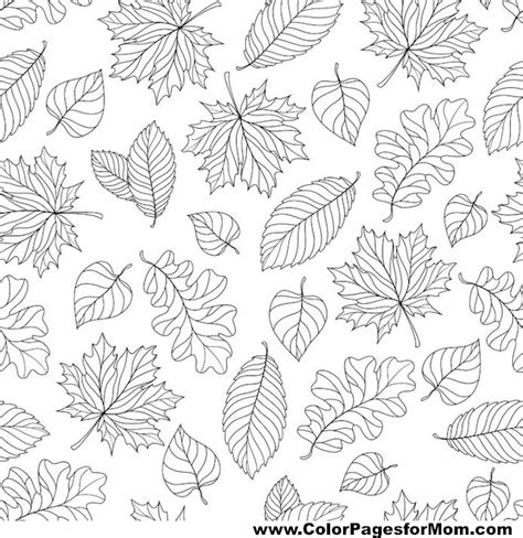 leaves coloring pages for adults advanced leaves coloring page 6