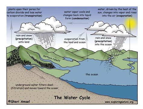 water cycle diagram with explanation water cycle