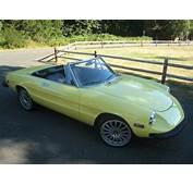 Purchase Used 1976 Alfa Romeo Spider 2000 Convertible 5