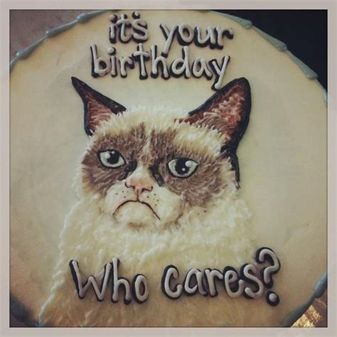 grumpy cat party ideas one charming party birthday 19 best grumpy cat party images on pinterest cat party