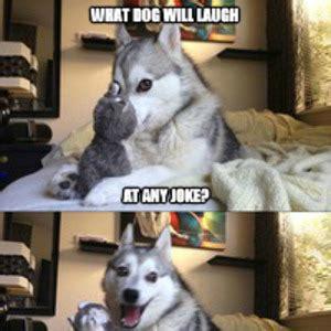 Dog Jokes Meme - meme center george vega 566 profile