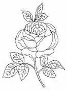 rose bush coloring page cecile brunner or polyantha rose bush coloring page free