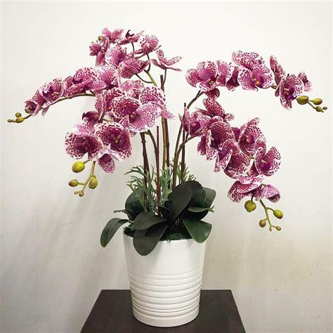 orkid utk dijual  tempahan siaran facebook