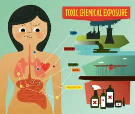 dangerous household chemicals are your cleaning products making you fat karousing com