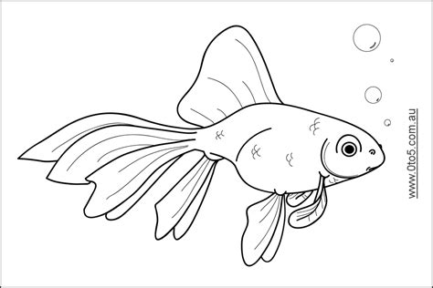 printable coloring pages goldfish goldfish coloring page coloring home